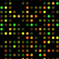 Bgee gene expression calls page logo